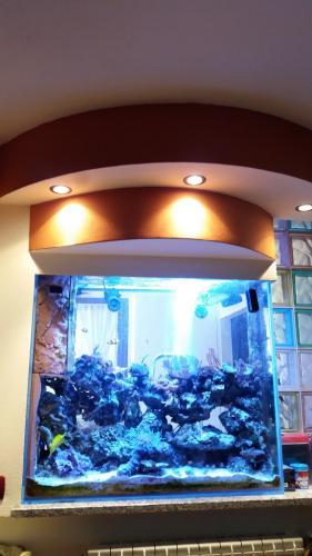 Acquario bifacciale-12